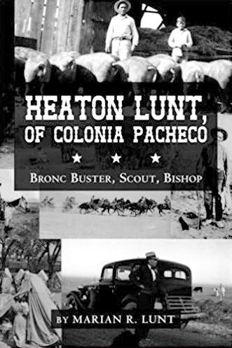 Heaton Lunt Book Cover